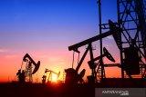 AS perkuat pasukan di dekat ladang minyak Suriah