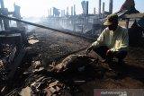 Kandang dilalap si jago merah, ratusan kambing mati terbakar