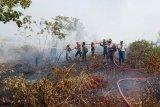 Pejabat terjun padamkan kebakaran lahan berharap gugah kepedulian masyarakat