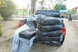 Yonif 713/ST sita 300 kg vanili tanpa dokumen