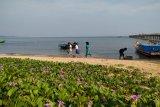 Mahasiswa Untan bantu promosi wisata Temajuk melalui media sosial