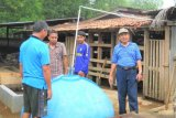 Environmentally Friendly Beef Cattle Farm are introduced in Dharmasraya