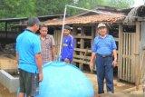 Mengenalkan Pengelolaan Peternakan Sapi Potong Ramah Lingkungan di Dharmasraya