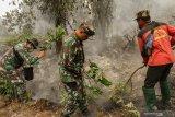 Karhutla Riau - Berusaha padamkan api, kakek di Inhil tewas terbakar