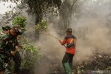 Penerbangan mulai terganggu, ASITA desak Pemrov Riau segera atasi asap