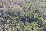 Curugsawer Pangandaran bisa jadi destinasi wisata yang menarik