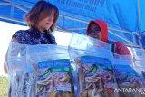 UNDP dan Baznas bermitra bangun perekenomian Lombok Utara