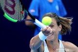 Martic tantang Pliskova di final Zhengzhou Open