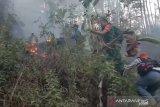 Kebakaran lalap hutan pinus di Kampung Cigadog Sukabumi