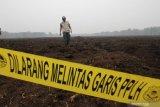 Karhutla Riau - Tersangka Penyebab kebakaran hutan dan lahan bertambah jadi 179 orang, terbanyak di Kalbar