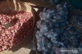 Harga bawang Merah-Putih di pasaran Kupang stabil