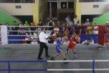 42 atlet bertanding di Kejurda Tinju Amatir Wali Kota Solok Cup 1