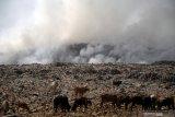 Rp17 miliar untuk penataan TPA sampah di Kota Kupang