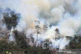 SMP di Palembang mundurkan  jam masuk siswa akibat asap