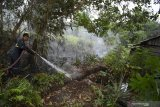 Polda Sulawesi Tenggara petakan daerah rawan karhutla