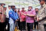 PLTBm datang, 1.233 rumah warga Mentawai benderang