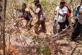 Wabup Flores Timur geram dihujat medsos karena memimpin pemadaman