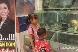 KKP mengkampanyekan gemar makan ikan di Lombok Barat