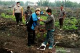 Polres Kotim teliti sampel gambut terbakar di areal perusahaan