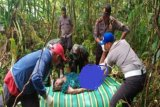 Seorang warga PNG tewas dalam kecelakaan lalu lintas di perbatasan Skouw