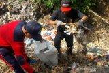 Di Temanggung, ratusan orang terlibat gerakan pungut sampah