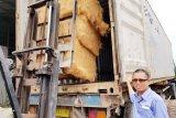 Peluang sabut kelapa di pasar Internasional menggiurkan