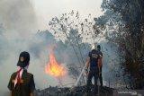 Kebakaran lahan di Kalsel mendekati landasan pacu Bandara Syamsudin Noor