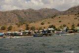 Warga bersikeras tolak penutupan Pulau Komodo karena curiga ada motif lain