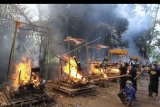 Warga menyulutkan api saat upacara Ngaben massal di Desa Adat Bayad, Tegalalang, Gianyar, Bali, Rabu (25/6/2019). Ritual Ngaben massal tersebut melibatkan ratusan orang untuk mendoakan sekaligus memberikan penghormatan terakhir bagi 59 jasad warga setempat yang dikremasi. ANTARA FOTO/Fikri Yusuf/nym