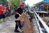 Ratusan warga Agats membersihkan lokasi kebakaran