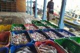 Pedagang ikan keluhkan minat pembeli kurang