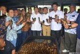 Pemprov Riau kembangkan pariwisata halal