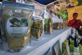 UKM di Bangka Barat kembangkan produk dari daun kelor