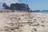 Walhi sebut Pantai Pasir Panjang jadi titik krusial kerusakan lingkungan