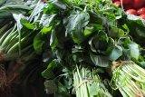 Harga sayuran hijau  naik akibat musim kemarau di Bandarlampung