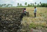 Kemitraan Pertamina Sumbagsel Dengan Petani
