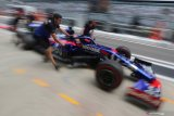 Toro Rosso ajukan permohonan  untuk ganti nama tim