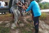 Pemprov Rujuk Pasien Lumpuh ke Surabaya
