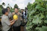 Gubernur Lampung siap jadikan Kartu Petani Berjaya proyek percontohan nasional