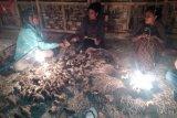 BTN Matalawa bantu pemberdayaan ekonomi warga Sumba