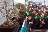 Yonif 405 ingin bangkitkan kembali sentra tanaman bonsai di Kabupaten Banyumas
