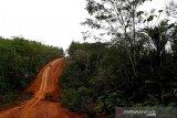 Status jalan Rantau Pulut-Tumbang Manjul berpotensi meningkat