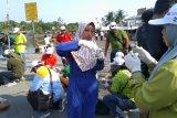 Peneliti : Kerang Hijau Teluk Jakarta cocok untuk biofilter