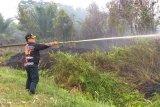 Kegiatan ekonomi masyarakat Kotim pulih setelah asap hilang