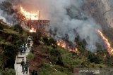 Objek wisata Kawah Putih di Bandung kebakaran