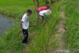 Petani Kota Magelang