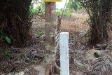 Kawasan hutan seluas 730 hektare di Bintan diputihkan
