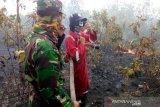 DPKP OKU padamkam kebakaran hutan dan lahan