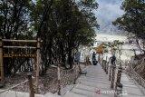 Relawan melihat kondisi Taman Wisata Alam Kawah Putih yang terdampak kebakaran Hutan di Ciwidey, Kabupaten Bandung, Jawa Barat, Selasa (8/10/2019).  Taman Wisata Alam Kawah Putih untuk saat ini ditutup sementara akibat terdampak kebakaran hutan yang mengelilingi area tersebut. ANTARA FOTO/Novrian Arbi/agr