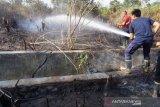 Pemkot Palu tangani 70 kasus kebakaran lahan kosong